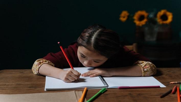 Curso de estudios de pre-escolar